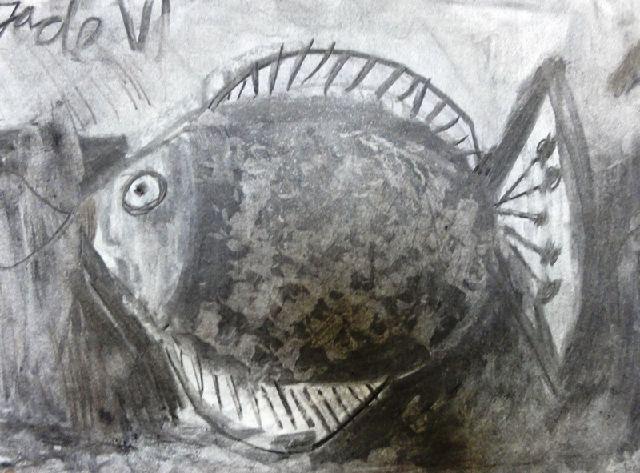 vissen8